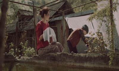 معرفی فیلم بازگشت به خانه